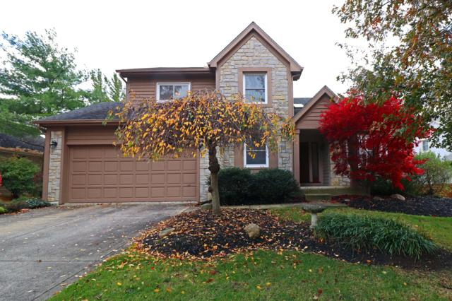 5607 Lynx Drive, Westerville, OH 43081 (MLS #218041451) :: Signature Real Estate