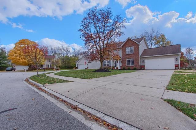 220 Chesterville Court, Canal Winchester, OH 43110 (MLS #218041567) :: Keller Williams Excel