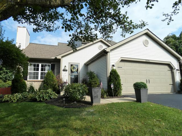 8094 Tuscany Road, Blacklick, OH 43004 (MLS #218041574) :: RE/MAX ONE