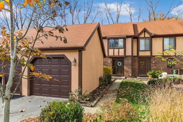 5131 Ormanton Drive, Columbus, OH 43230 (MLS #218041578) :: Shannon Grimm & Partners