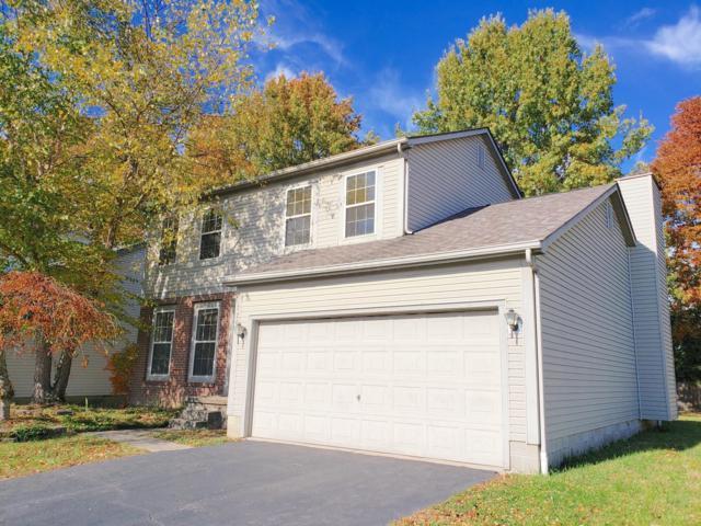 726 Tricolor Drive, Reynoldsburg, OH 43068 (MLS #218041643) :: Keller Williams Excel