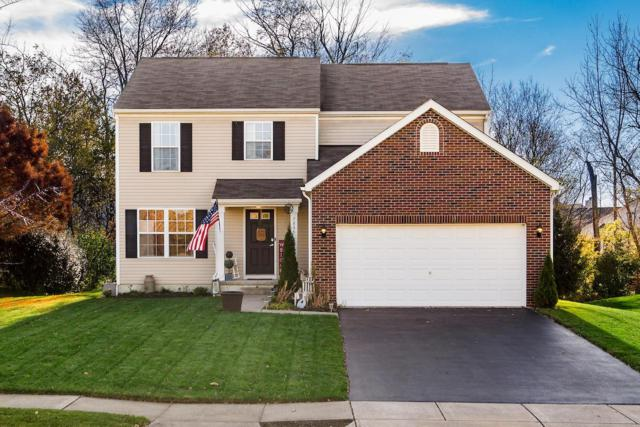 7835 Edgewater Court, Canal Winchester, OH 43110 (MLS #218041647) :: Keller Williams Excel