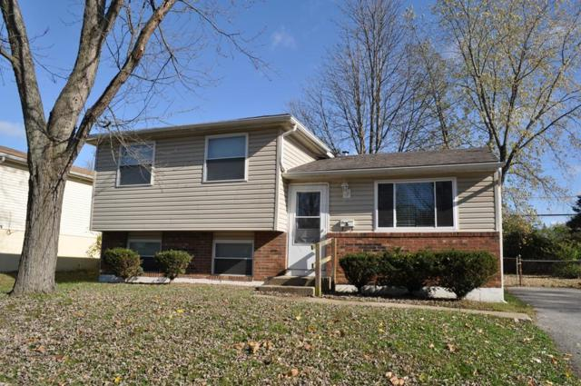 3008 Whitlow Road, Columbus, OH 43232 (MLS #218042066) :: Brenner Property Group   KW Capital Partners