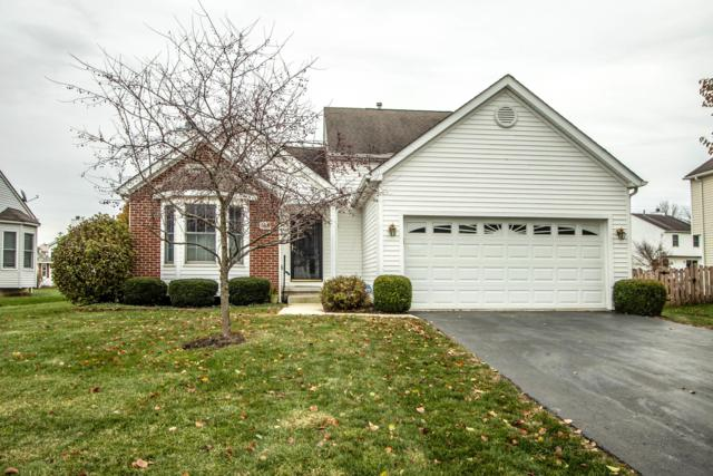 668 Heartland Meadows Drive, Sunbury, OH 43074 (MLS #218042096) :: BuySellOhio.com