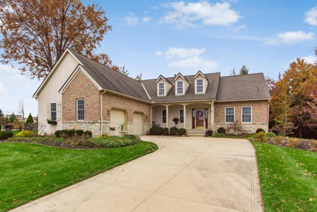 6806 Whitetail Lane, Westerville, OH 43082 (MLS #218042179) :: The Mike Laemmle Team Realty