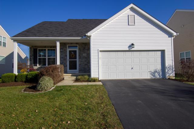 236 Whitewater Court, Delaware, OH 43015 (MLS #218042223) :: RE/MAX ONE