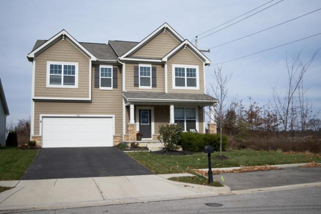 870 Broadview Chase Drive, Delaware, OH 43015 (MLS #218042319) :: RE/MAX ONE