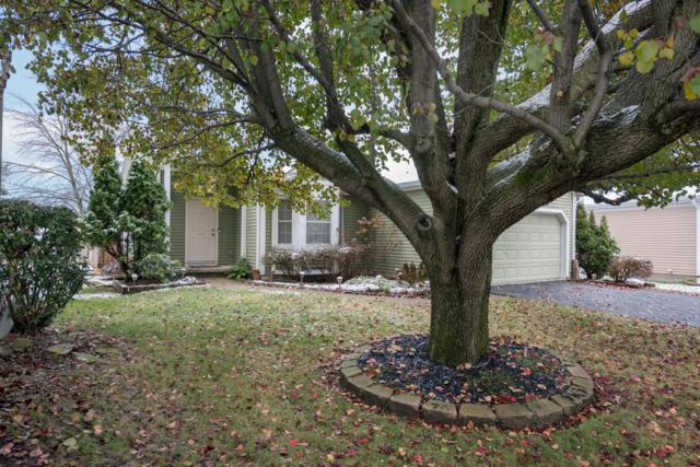 2908 Torrey Pines Drive, Pickerington, OH 43147 (MLS #218042533) :: Exp Realty