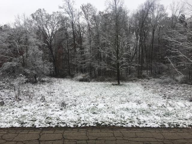 Lot 125 Green Valley, Howard, OH 43028 (MLS #218042599) :: RE/MAX ONE