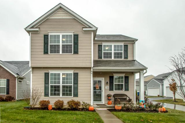 5706 Marshfield Drive, Westerville, OH 43081 (MLS #218042641) :: Shannon Grimm & Partners