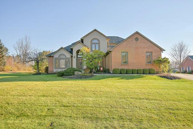 6112 Africa Road, Galena, OH 43021 (MLS #218042695) :: The Raines Group