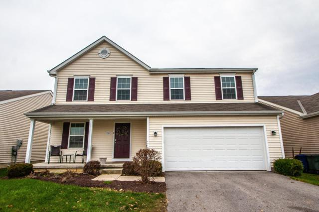 336 Mogul Drive, Galloway, OH 43119 (MLS #218043023) :: The Mike Laemmle Team Realty