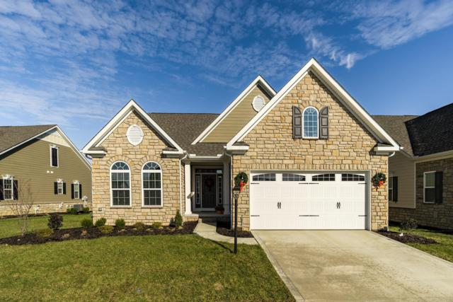 7012 Waters Edge Drive, Dublin, OH 43016 (MLS #218043114) :: Keller Williams Excel