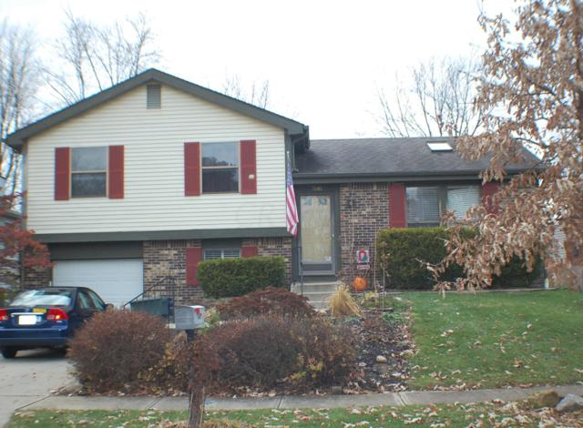 7681 Yosemite Drive, Worthington, OH 43085 (MLS #218043185) :: Keller Williams Excel