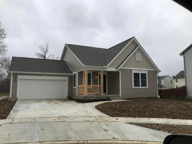 3558 Motts Place Court, Canal Winchester, OH 43110 (MLS #218043227) :: The Mike Laemmle Team Realty