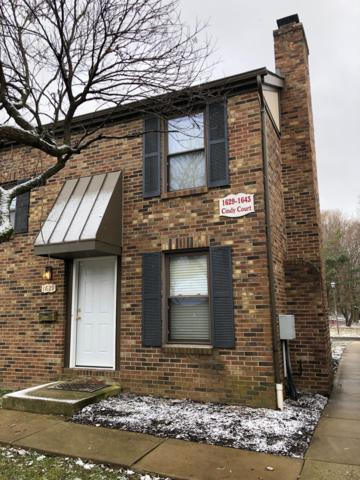 1629 Cindy Court, Columbus, OH 43232 (MLS #218043263) :: Keller Williams Excel