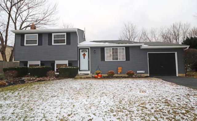 8680 Renaa Avenue, Galloway, OH 43119 (MLS #218043400) :: Berkshire Hathaway HomeServices Crager Tobin Real Estate
