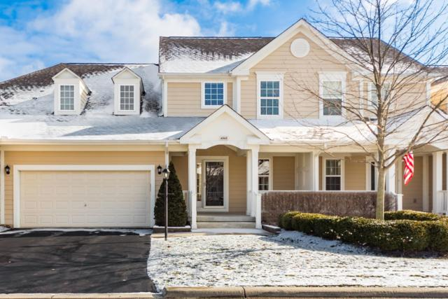 6565 Wensley Court, Westerville, OH 43082 (MLS #218043489) :: Signature Real Estate