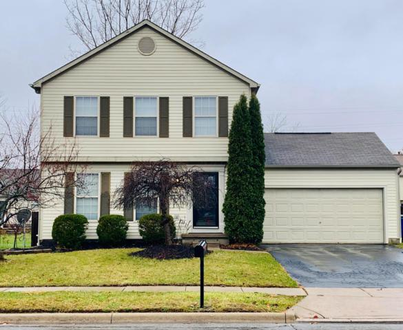 9045 Holquest Drive, Lewis Center, OH 43035 (MLS #218043530) :: Berkshire Hathaway HomeServices Crager Tobin Real Estate
