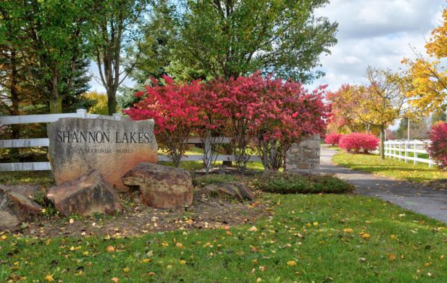 4316 Coble Bowman Way, Canal Winchester, OH 43110 (MLS #218043619) :: Keller Williams Excel
