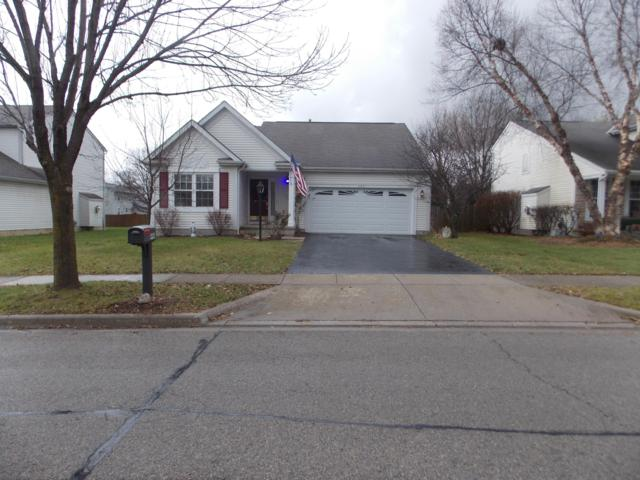446 Greenhill Drive, Groveport, OH 43125 (MLS #218043680) :: RE/MAX ONE