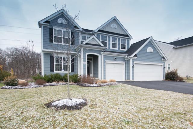 4495 Jada Way, Hilliard, OH 43026 (MLS #218043905) :: Signature Real Estate