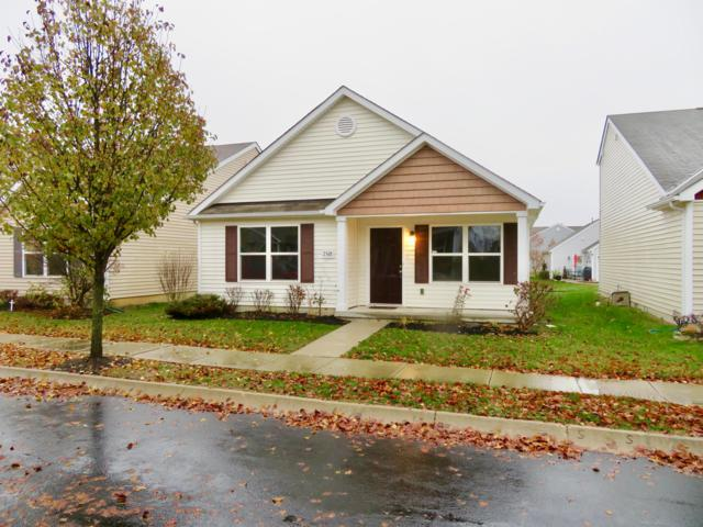 2568 Snowtip Lane, Grove City, OH 43123 (MLS #218043986) :: Signature Real Estate