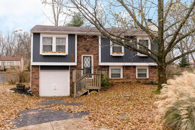 6042 Chickadee Place, Westerville, OH 43081 (MLS #218043987) :: Brenner Property Group | KW Capital Partners