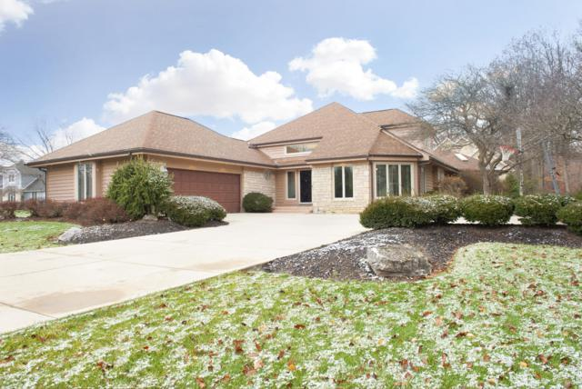 3151 Shoreline Drive, Lewis Center, OH 43035 (MLS #218044075) :: Exp Realty