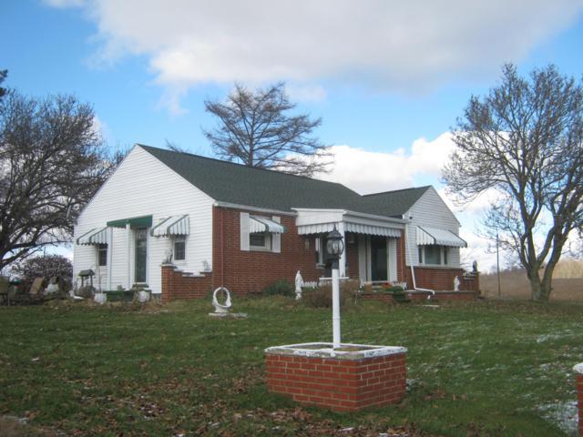 6375 Adamsville Road, Zanesville, OH 43701 (MLS #218044324) :: Exp Realty