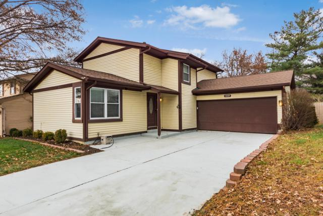 3559 Countryview Drive, Canal Winchester, OH 43110 (MLS #218044419) :: The Clark Group @ ERA Real Solutions Realty