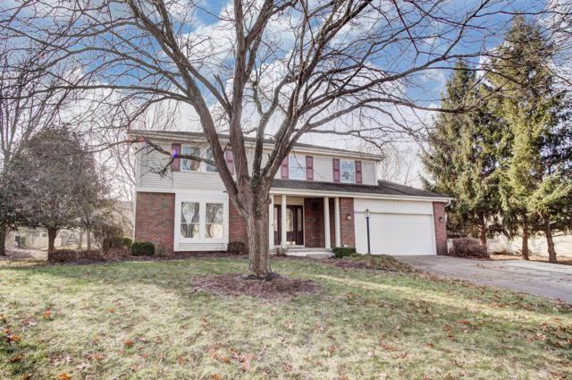 1015 Mcleod Parc, Pickerington, OH 43147 (MLS #218044487) :: The Clark Group @ ERA Real Solutions Realty