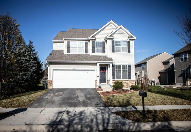 3924 Ostia Drive, Columbus, OH 43219 (MLS #218044530) :: Brenner Property Group   KW Capital Partners