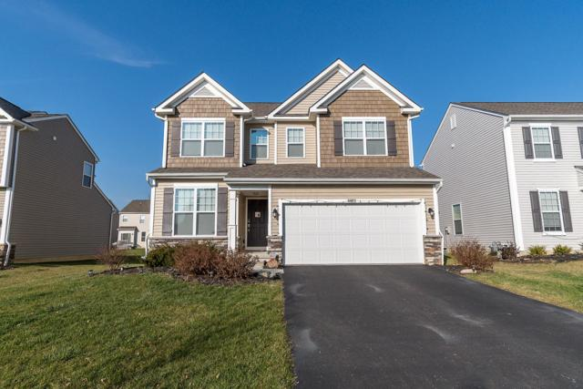 8652 Melton Fields Drive, Blacklick, OH 43004 (MLS #218044565) :: Julie & Company