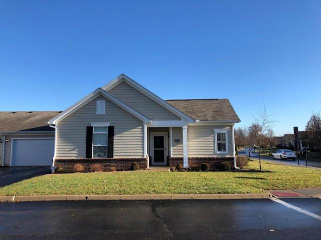 5542 Armstead Avenue, New Albany, OH 43054 (MLS #218044570) :: Keller Williams Excel