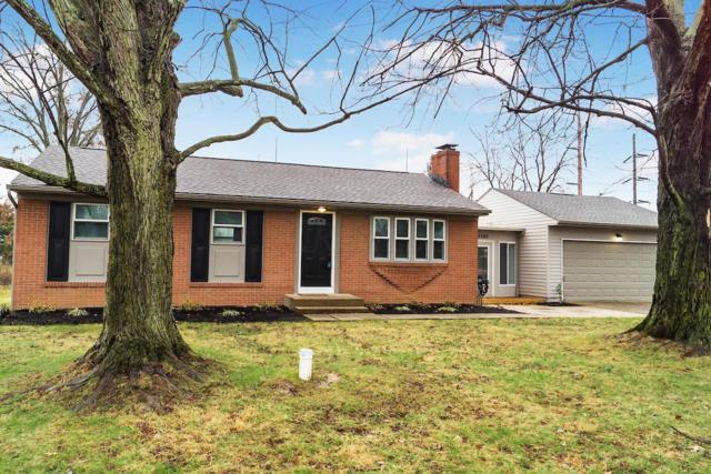 5380 Ulry Road, Westerville, OH 43081 (MLS #218044786) :: Julie & Company