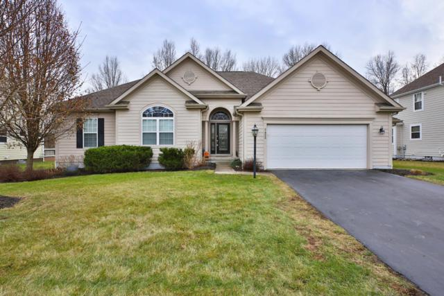 7452 Upper Cambridge Way, Westerville, OH 43082 (MLS #218044811) :: Keller Williams Excel