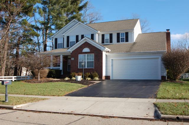 1320 Havant Drive, New Albany, OH 43054 (MLS #218044883) :: Julie & Company