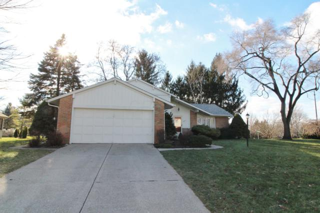1003 Autumn Meadows Drive, Westerville, OH 43081 (MLS #218044899) :: Julie & Company