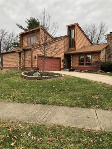 286 Tallowwood Drive, Westerville, OH 43081 (MLS #218045417) :: Brenner Property Group | KW Capital Partners
