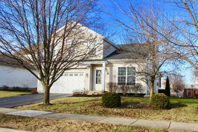 2248 Red Barn Street, Delaware, OH 43015 (MLS #219000057) :: RE/MAX ONE
