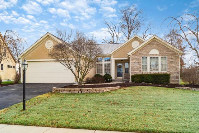 5004 Shoreside Drive, Grove City, OH 43123 (MLS #219000385) :: RE/MAX ONE