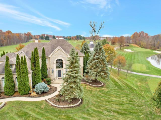 6465 Lake Trail Drive, Westerville, OH 43082 (MLS #219000768) :: RE/MAX ONE