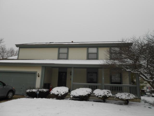 1171 Starlight Drive, Reynoldsburg, OH 43068 (MLS #219001135) :: RE/MAX ONE