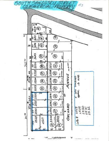 0 S Sandusky Street, Delaware, OH 43015 (MLS #219001288) :: RE/MAX ONE