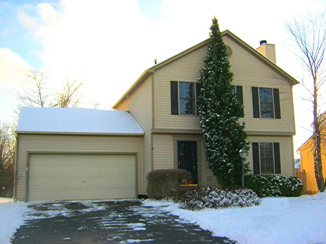 252 Western Dreamer Drive, Delaware, OH 43015 (MLS #219001302) :: RE/MAX ONE