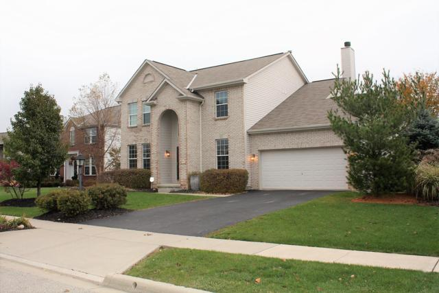7737 Peck Court, Lewis Center, OH 43035 (MLS #219001316) :: RE/MAX ONE