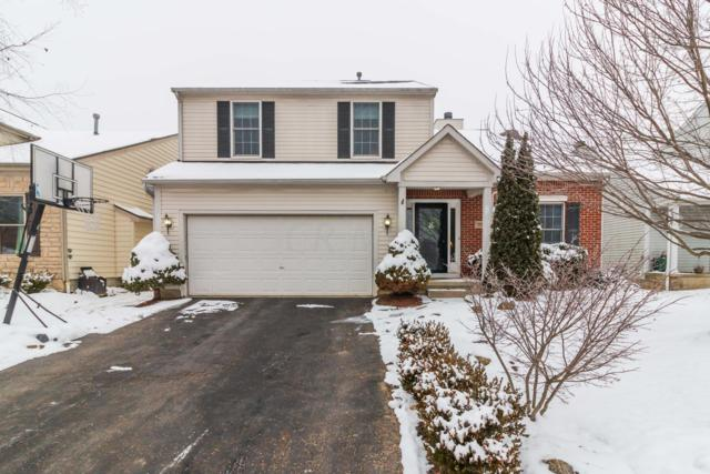 7896 Meranda Drive, Blacklick, OH 43004 (MLS #219001337) :: Brenner Property Group | KW Capital Partners