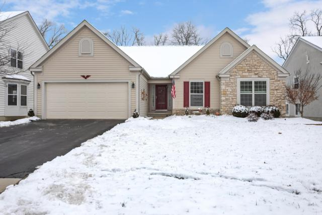 411 Inverness Avenue, Delaware, OH 43015 (MLS #219001379) :: RE/MAX ONE