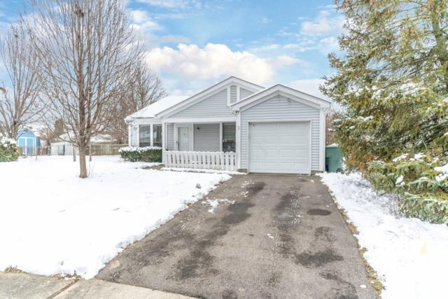8639 Sill Court, Powell, OH 43065 (MLS #219001421) :: The Raines Group